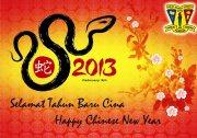 chinese-new-year-2013-msnpp-copy